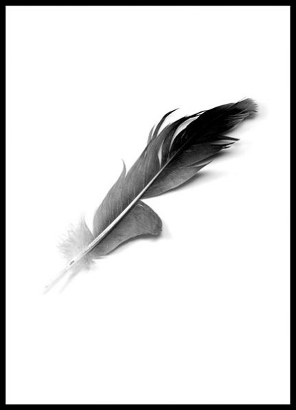 Poster Feather